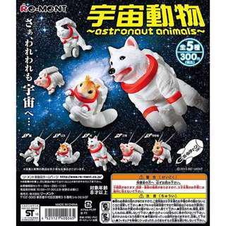 日本 絕版 宇宙動物 太空