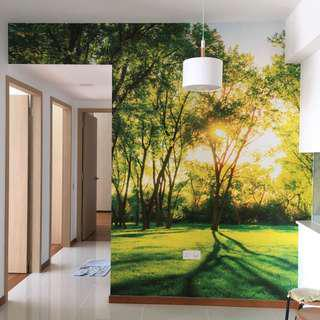 Wall Mural / Wall Paper - Customize
