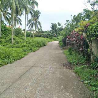 300 Sqm Lot In Silang Cavite Clean Title Near Tagaytay Rush