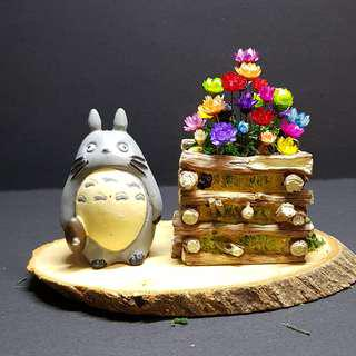 Totoro Wooden Crate Frozen Flower Terrarium (4)