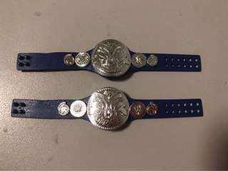 Wwe smackdown tag team belts for action figures