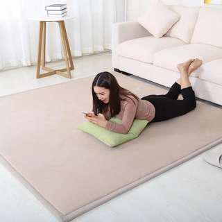 高級厚地毯 92x153mm (厚度大約2cm) 卡其色