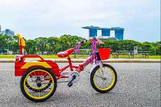 🚚 Wonderful road Bikes for Rent