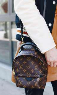 LV palm spring mini *boutique grade* from Hong Kong