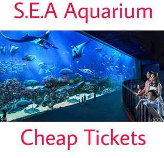 Sea Aquarium Tickets