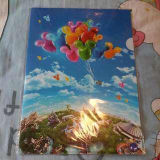 dianey plastic folder
