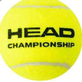 Head Championship tennis balls