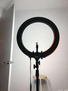 """19"""" Diva II LED Ring Light - Full Studio Package"""