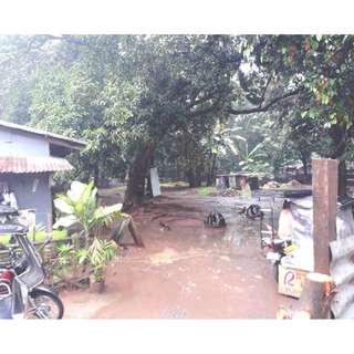 For Sale 2,000sqm Lot in Brgy.San Isidro Antipolo near Robinsons Mall
