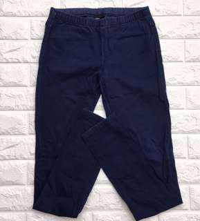 Blue Jeggings Pants