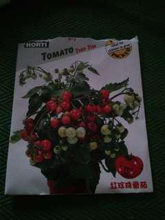 🚚 Tomato seed