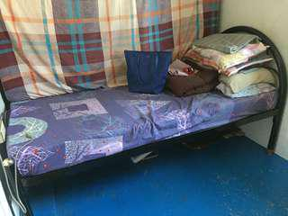 Single Bed + Uratex Foam