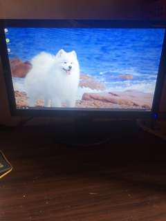 "LED Monitor ACER P166HQL 15.6"""