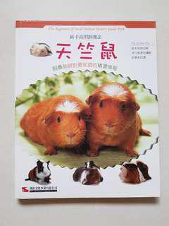 Guinea Pigs : The Beginners of Small Animals Owner's Guide Book