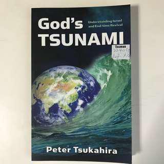God's Tsunami - Peter Tsukahira