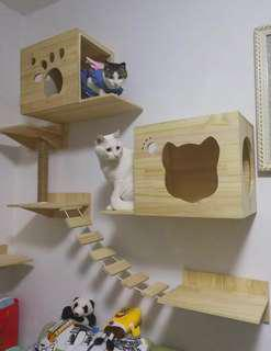 Set of wall-mounted cat climbing system *Preorder