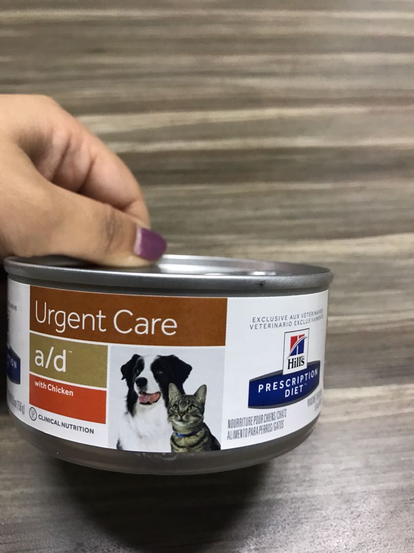 Hill S Prescription Diet Urgent Care Wet Food Pet Supplies For Dogs Dog Food On Carousell