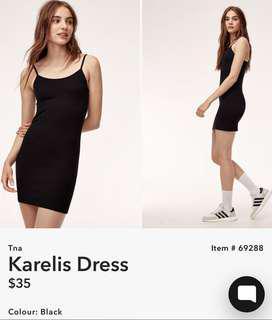 Aritzia Karelis Dress