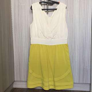Yellow and Beige Skater Dress