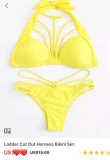 Cut Out Harness Bikini Set