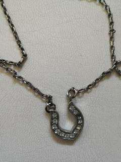 Rare Horseshoe Necklace
