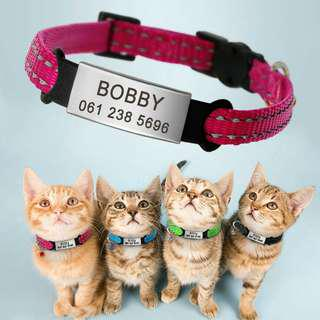 Personalized Engraving Pet Collar With ID Tag For Kitten & Cat