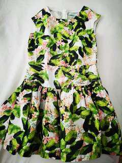 Gingersnaps green dress