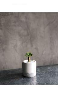 🚚 Small Cylindrical Cement Pot