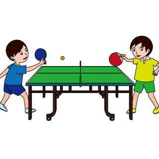 Table Tennis Coach/Sparring partner