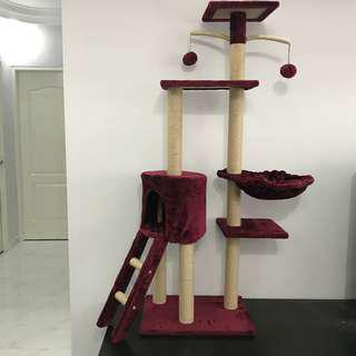 cat condo tree scratch post climb toy cushion, not bed carrier cage