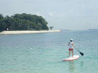 Rental of Inflatable Stand-Up Paddle Board