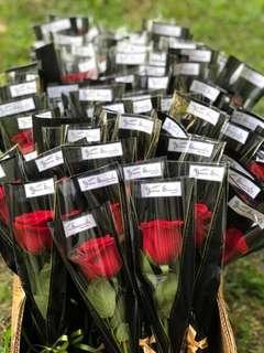 🌹 Single stalk rose bouquet