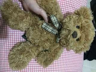 Teddy bear tody by teddy house