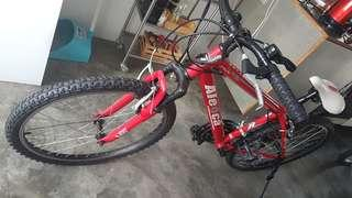 Aleoca red mountain bike