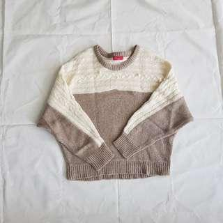 Earth Music & Ecology sweater