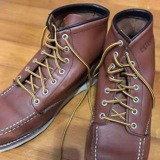 Carterpillar Shoes