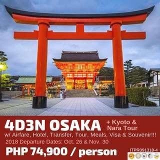 4D3N Osaka plus Kyoto and Nara Tour