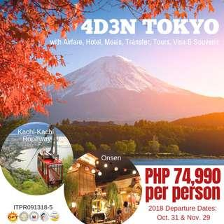 4D3N Tokyo All Inclusive Tour Package