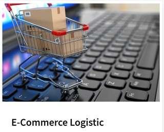 E-Commerce Last Mile Delivery