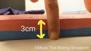Tatami / jigsaw / bjj / jiu jitsu rolling training dual color mats ( 1m x 1m x 3cm)