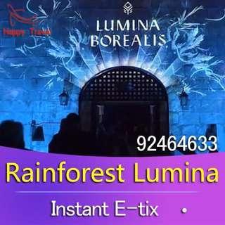 Rainforest Lumina