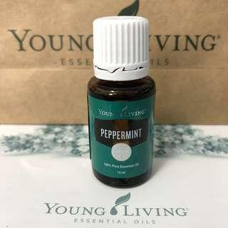 [Instock] Peppermint YL Essential Oil