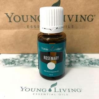 [Instock] Rosemary YL Essential Oil