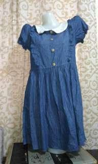 Assorted Denim Dress