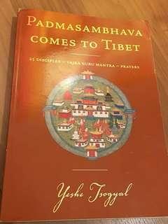 Padmasambhava comes to Tibet - 25 disciples