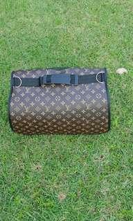 None authentic LV cat carrier 🐱🐱
