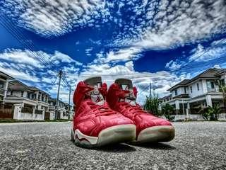 Air Jordan 8 Slam Dunk