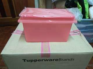 Tupperware Rice Keeper