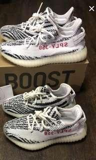 Price firm/No trade : us5 n us10 Adidas Yeezy Zebra used