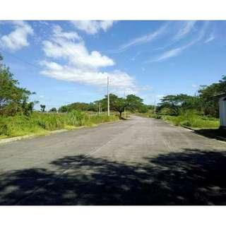 FOR SALE: RESIDENTIAL and COMMERCIAL LOT in ROYAL NORTHWOODS SUBD.
